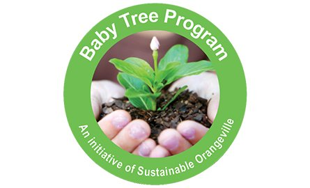 Baby Tree Program Logo