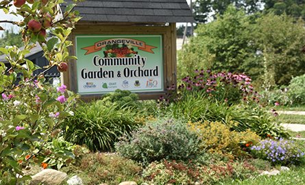 sign at the community garden