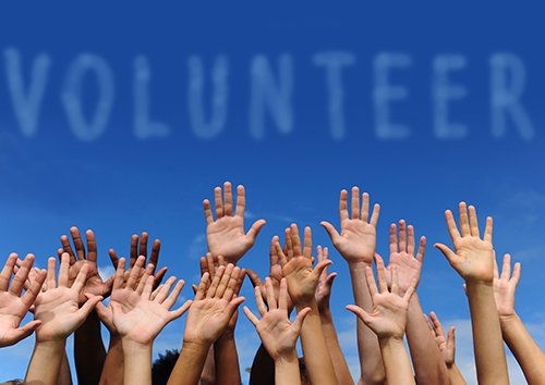 line of hands up to volunteer